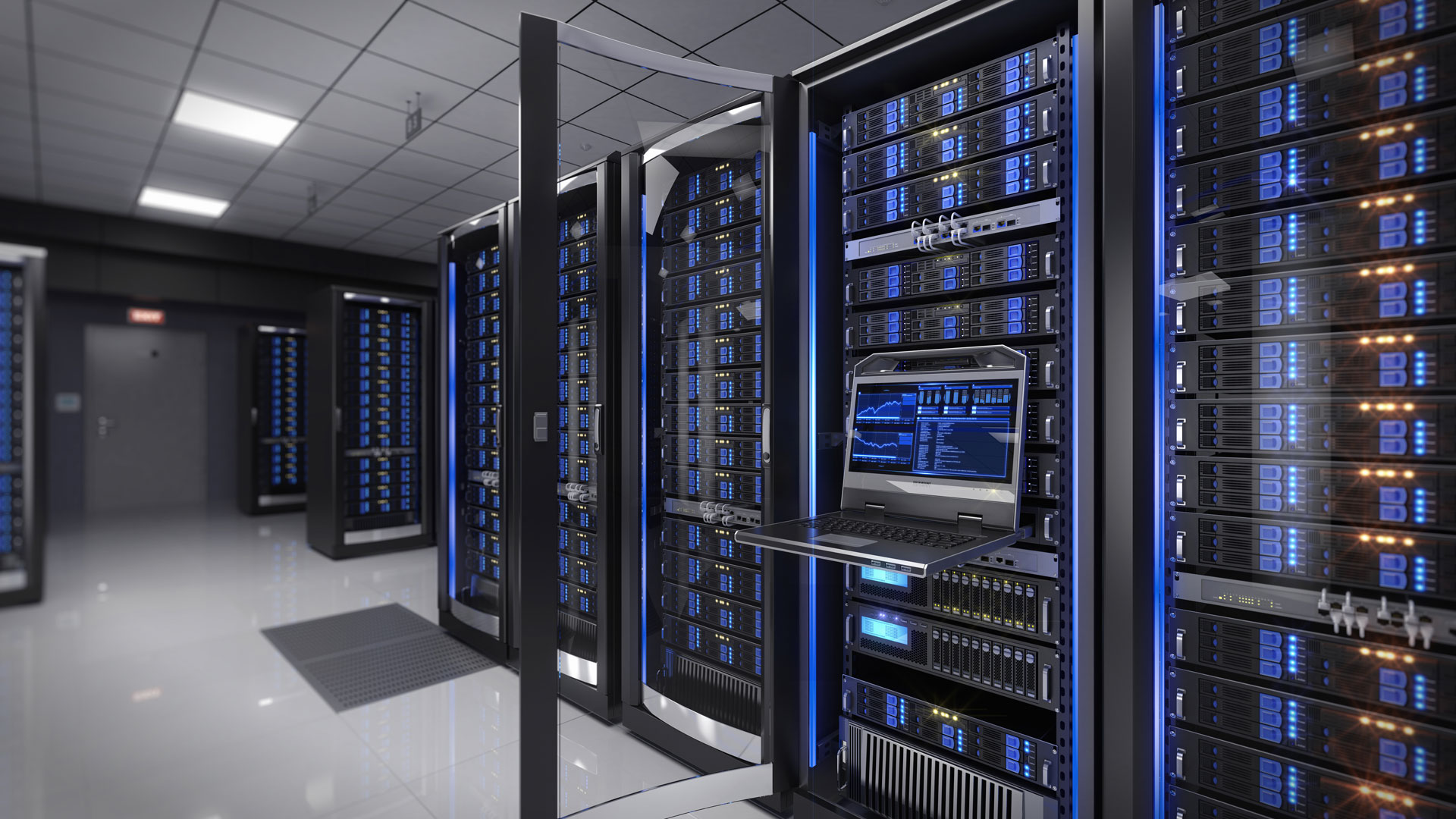 Things to Know About THC Servers Website Hosting